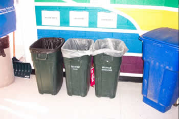 Recycle Green Bins